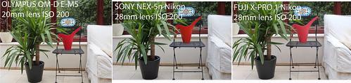Olympus OM-D E-M5 Sony NEX-5n Fuji X-Pro 1 - ISO 200