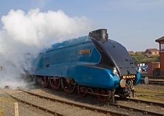 LNER A4 Bittern 4464  1a