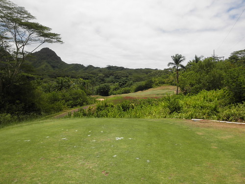 Royal Hawaiian Golf Club 201