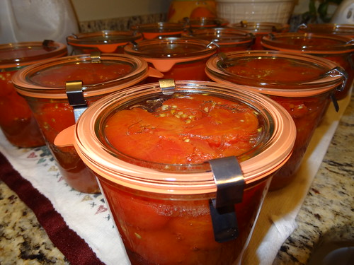 Canning Tomatoes July 2012 (6)