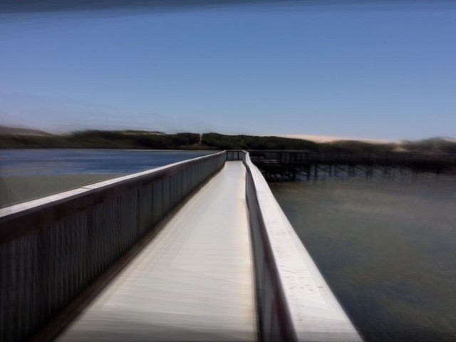 Walkway leading out to the estuary and dunes Photo Jun 26, 1 38 48 PM