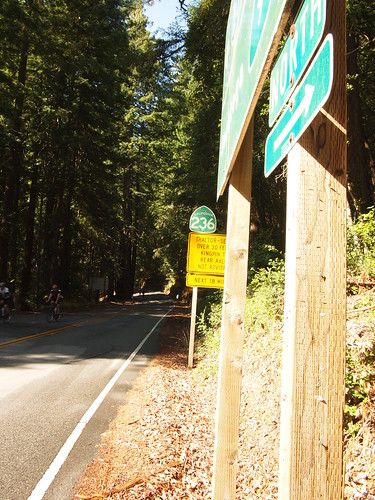 Heading into Big Basin State Park