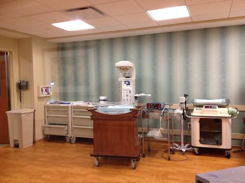 Hospital Nursery 2014