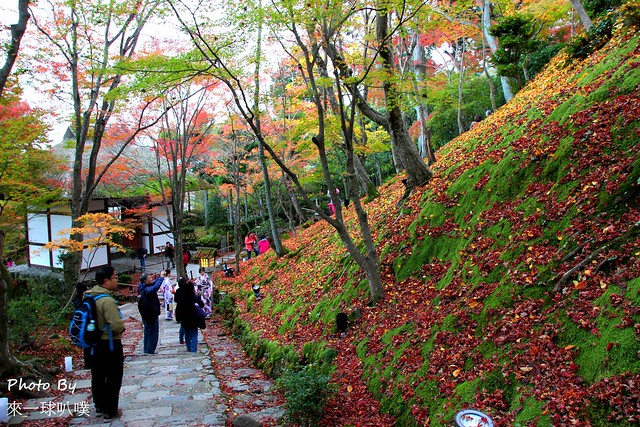 嵐山旅遊景點-常寂光寺50