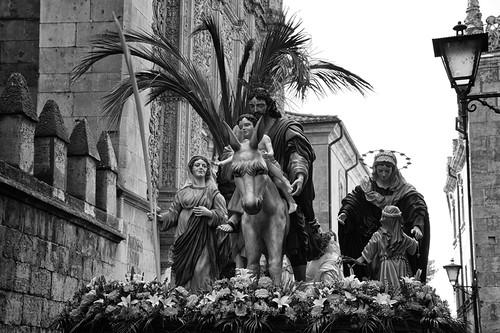 Domingo de Ramos by Andrés Ñíguez