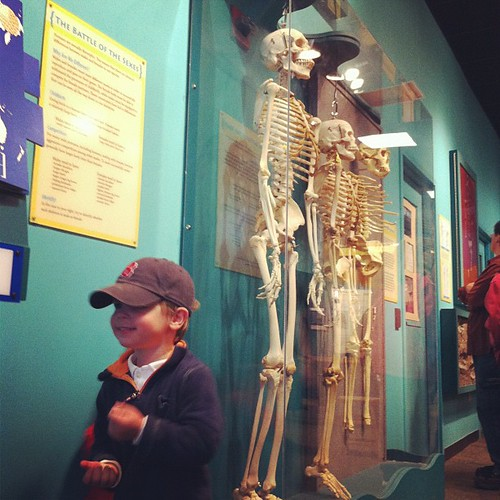 Seeing the skeletons...daddy would be proud