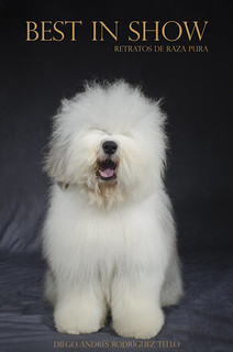 Front Cover - Old English Sheepdog