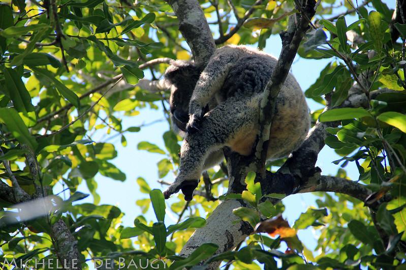 18 April 2012- zooblog027