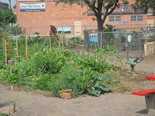 Cole Garden Plot
