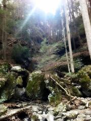 Nature (2)