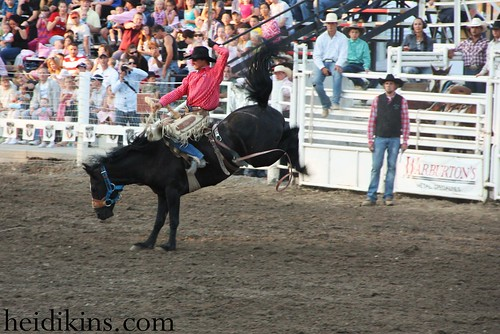 Strawberry Days Rodeo_June 2012 (22)