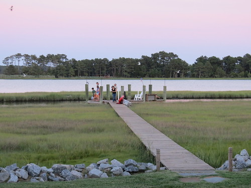 Chincoteague June 2012