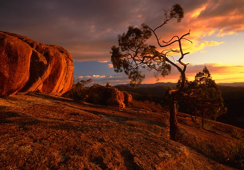 sunset sky cloud tree rock landscape pyramid border australia boulder nsw queensland granite lone girraween stanthorpe ballendean