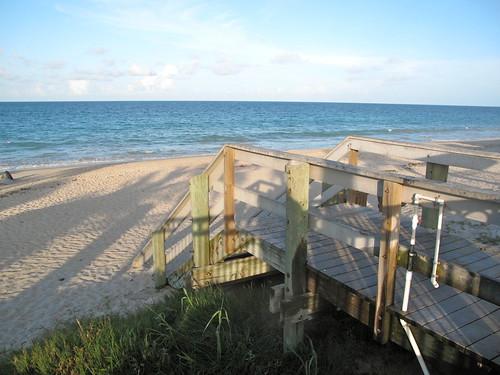 Livingaftermidnite - Beachin'