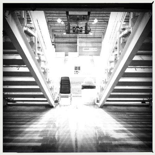 Lines, Showplace Arena, Memphis, Tenn.