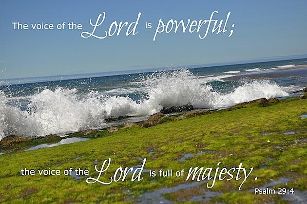 Psalm 294.jpg