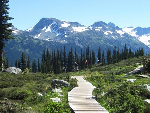 Harmony Lakes Loop trail