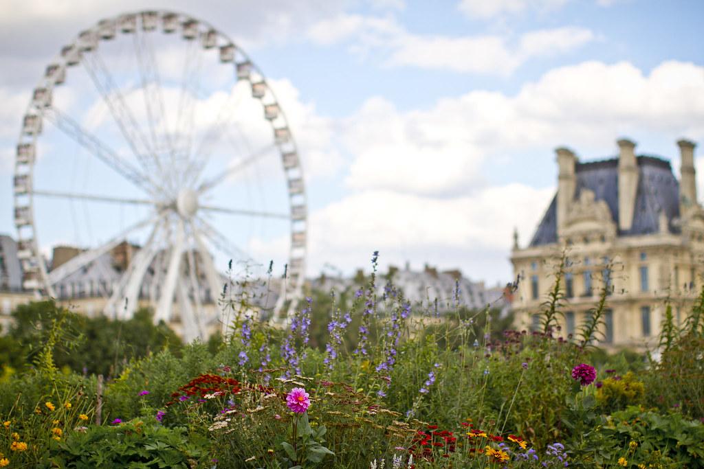 paris_tuileries_ferris_wheel_louvre_summer0