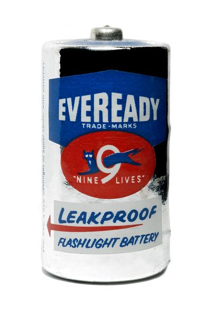 Leak Proof Cat Litter Box