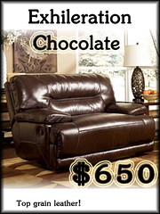 42401-52ExhilerationChocolate