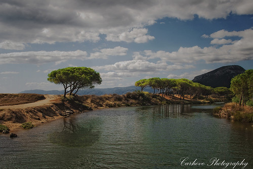 sardegna naturaleza tree nature water rio landscape arbol agua italia sardinia paisaje reflejos cerdeña nikond80 worldwidelandscapes natureselegantshots carhove olétusfotos mygearandme mygearandmepremium mygearandmebronze mygearandmesilver mygearandmegold rememberthatmomentlevel4 rememberthatmomentlevel1 rememberthatmomentlevel2 rememberthatmomentlevel3 riocedrino rememberthatmomentlevel7 rememberthatmomentlevel9 rememberthatmomentlevel5 rememberthatmomentlevel6 rememberthatmomentlevel8 rememberthatmomentlevel10