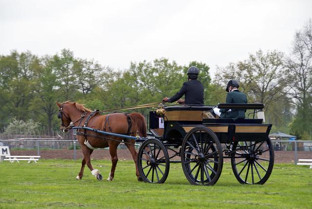 2012-05-05 Dressuur & Vaardigheidwedstrijd