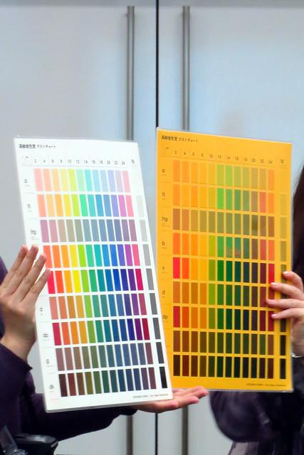 elder-sight test chart