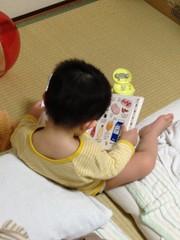 風呂上り読書とらちゃん(2012/4/24)