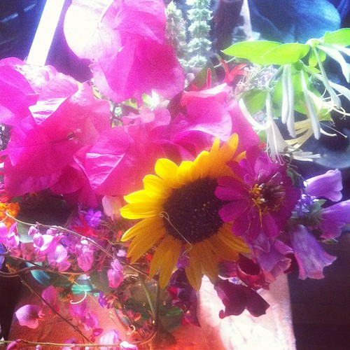 Summer solstice bouquet - foxgloves, honeysuckle, verbena, salvia, coralvine, snapdragons, plumbago, bougainvillea, zinnia, basil, scullcap, sunflower!