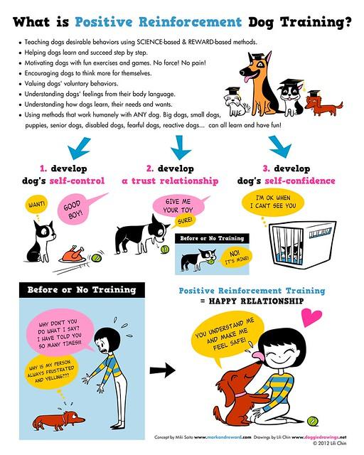 Image Result For Dog Training Positive