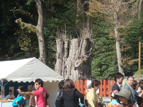 After Japan trip 2011 - day 3. Tokyo - Kamakura.