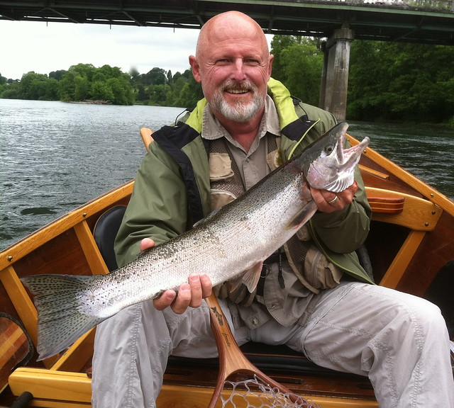 Steelhead in town the caddis fly oregon fly fishing blog for Willamette river fishing report