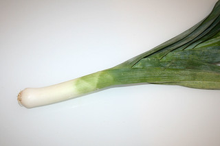 04 - Zutat Lauch / Ingredient leek
