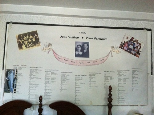 Saldivar Bermudez family tree