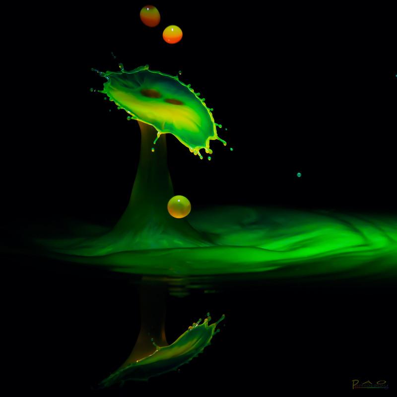 IMAGE: http://farm8.staticflickr.com/7271/7822153692_58b3a3f4e5_c.jpg