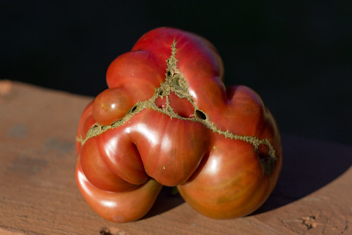 Mutant heirloom