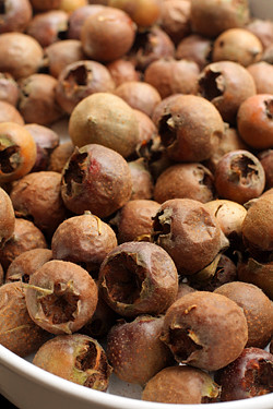 bletted medlars for medlar jelly