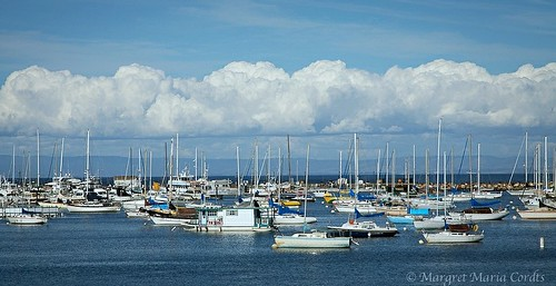 marina with a charmingly fluffy cloud layer