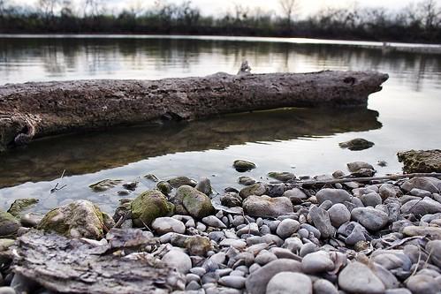 lake water log rocks texas shore sanangelo lakenasworthy