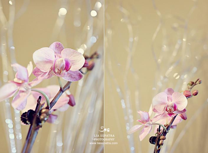 Orchid3rdanniv