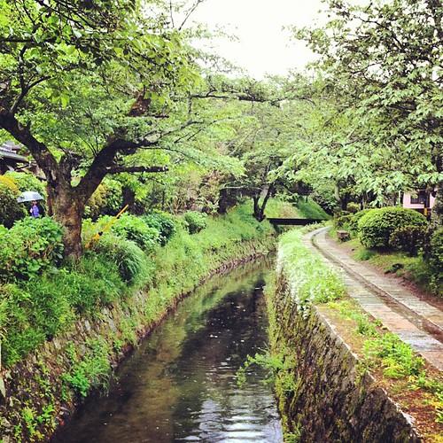 Paseo de los filósofos #kyoto #japan