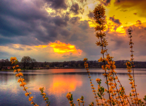 sunset lake west kent ravenna twinlake portagecounty kentoh ravennaoh springflowers,twinlake,hdr,iphone4s 肯特,日落,