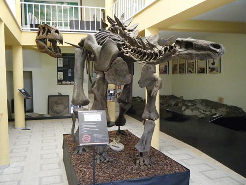 Réplica do esqueleto de um dinossauro Dacentrurus