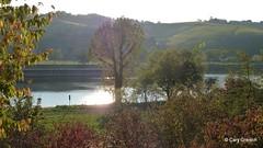 Die Mosel, vom Elterberg bei Palzem aus gesehen (2011-10-16 -16)