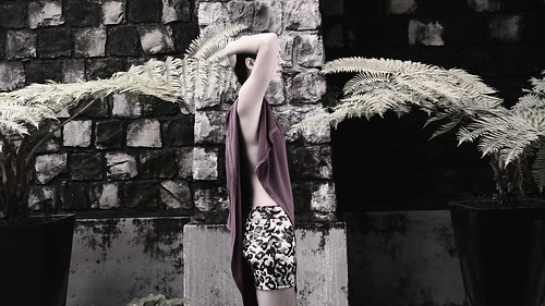 Burdeo Moda by camilamanns