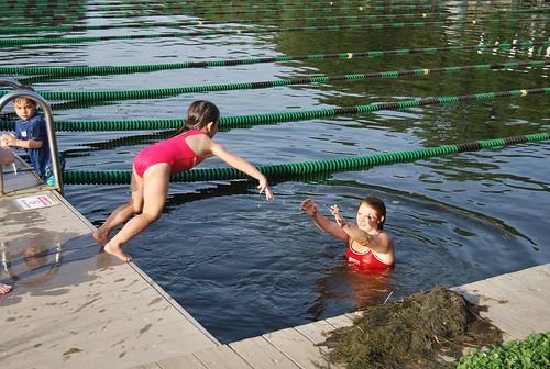 swimming - dive 4