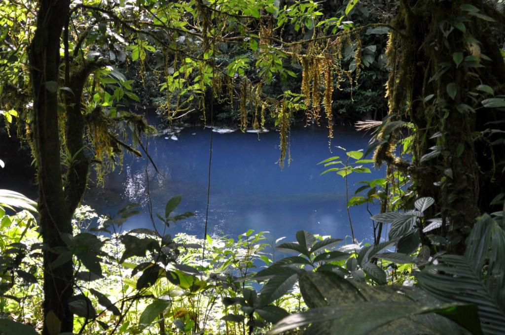 El Río Celeste recién teñido y coloreado por el Volcán Tenorio río celeste, colorido capricho de la naturaleza - 7538426812 832fb1ca07 o - Río Celeste, Colorido capricho de la Naturaleza