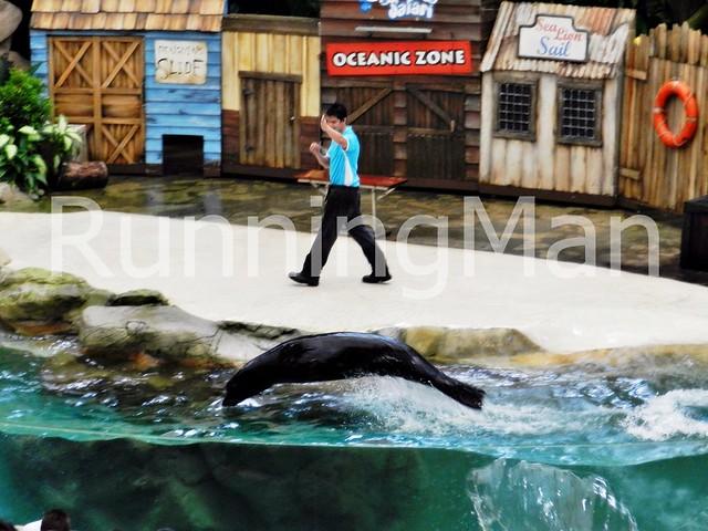 Singapore Zoo 10