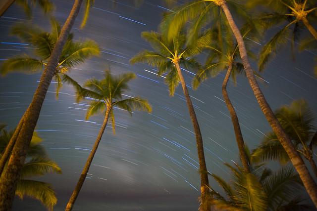 Maui Night