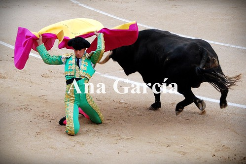Fernando 9